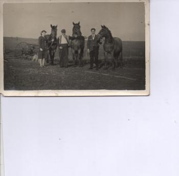 paulina uzarska ludzie z końmi na polu