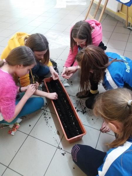 Ogród szkolny- za nami pierwsze wysiewy nasion do rustykalnego ogrodu.