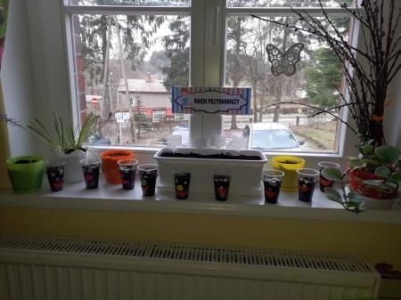 Wiosenne sadzenie roślin