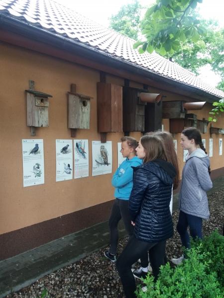 Zajęcia w Siedzibie Welskiego Parku Krajobrazowego w Jeleniu