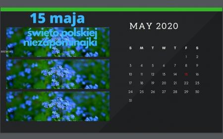15 maja - Święto polskiej niezapominajki