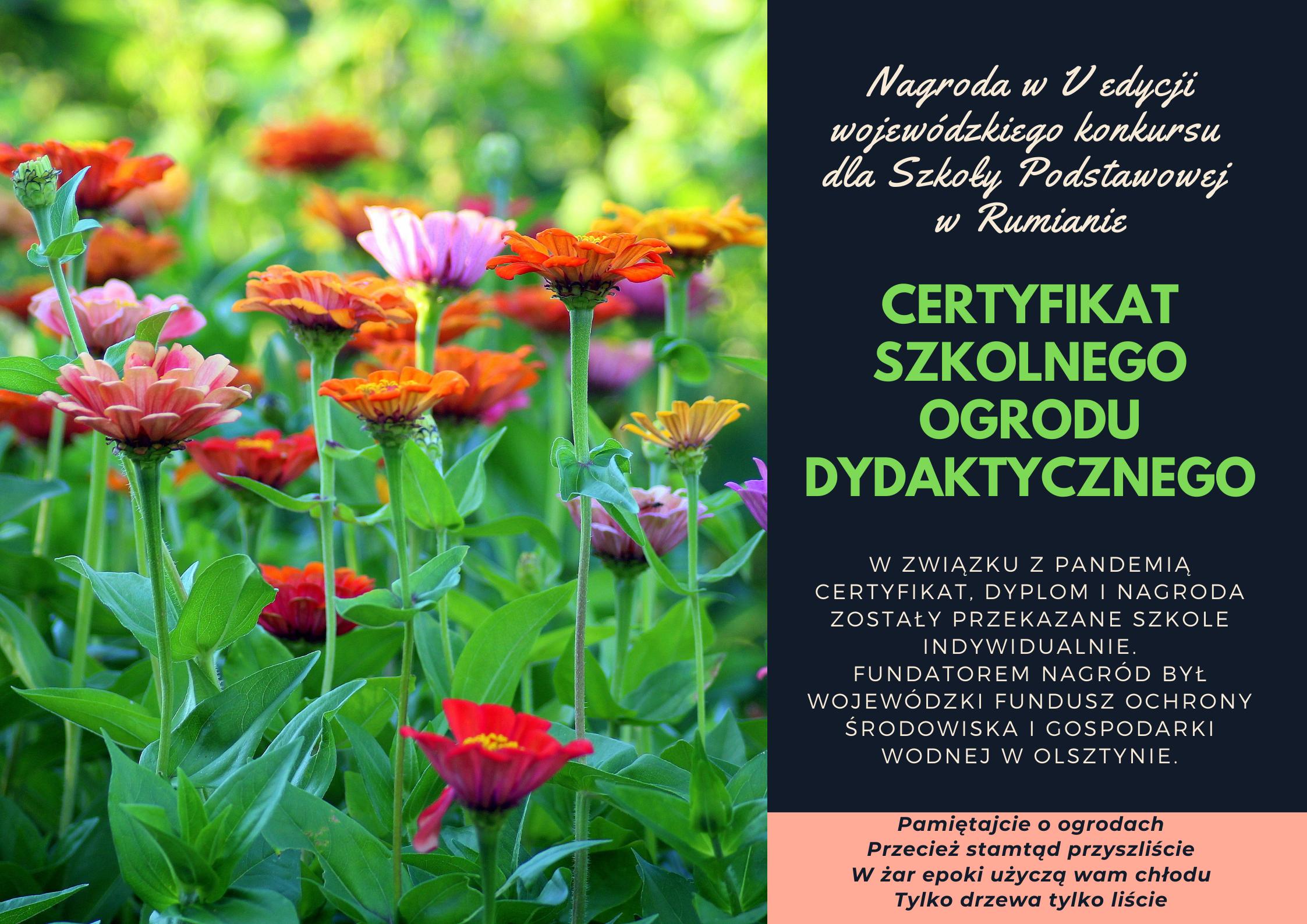 Certyfikat Szkolnego Ogrodu Dydaktycznego